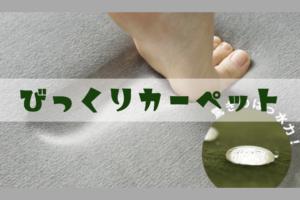 赤ちゃんのいる家庭にオススメのカーペット